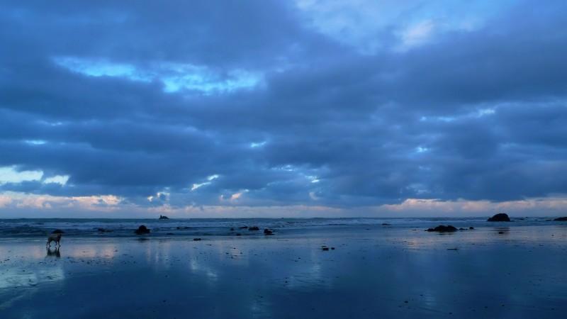 brookings oregon beach sunrise low tide