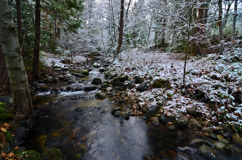 ashland creek winter scene
