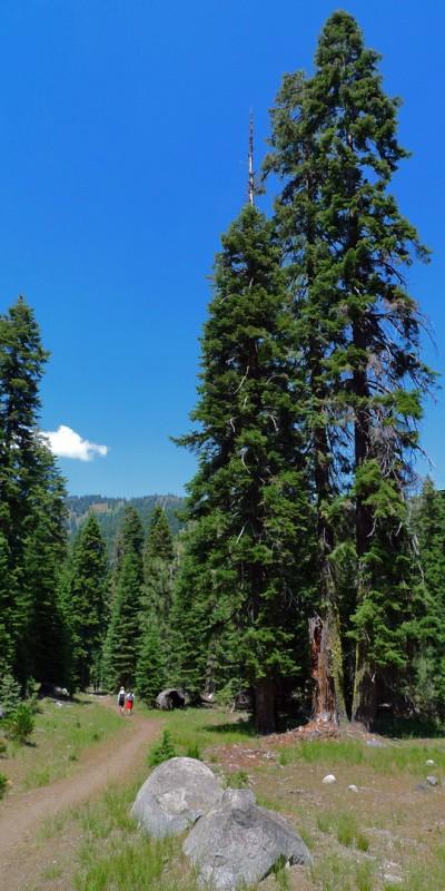 trinity alps northern california hiking trails