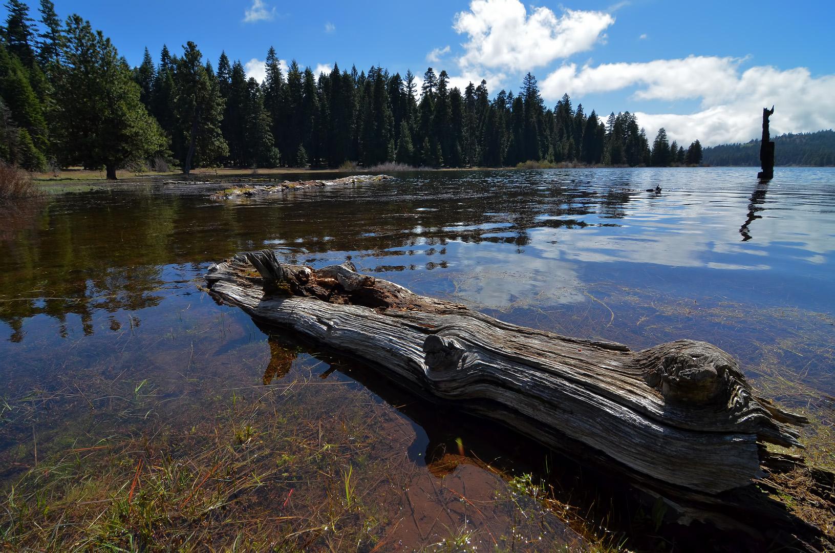 Hyatt lake ashland daily photo for Hyatt lake cabins