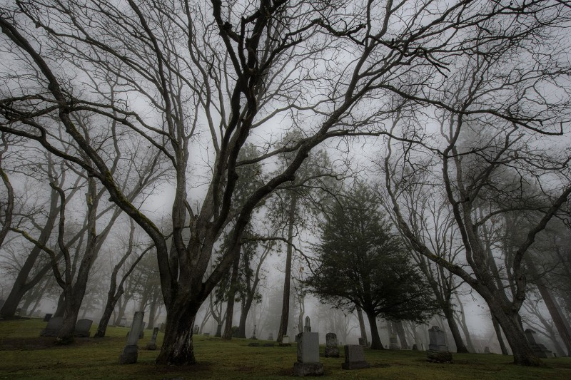 ashland oregon cemetery fog trees tomb stones