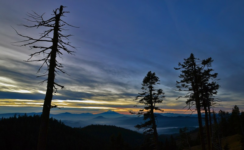 mount shasta sunrise mt