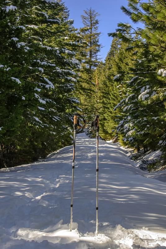 Shale City Road snow grizzly peak ski poles