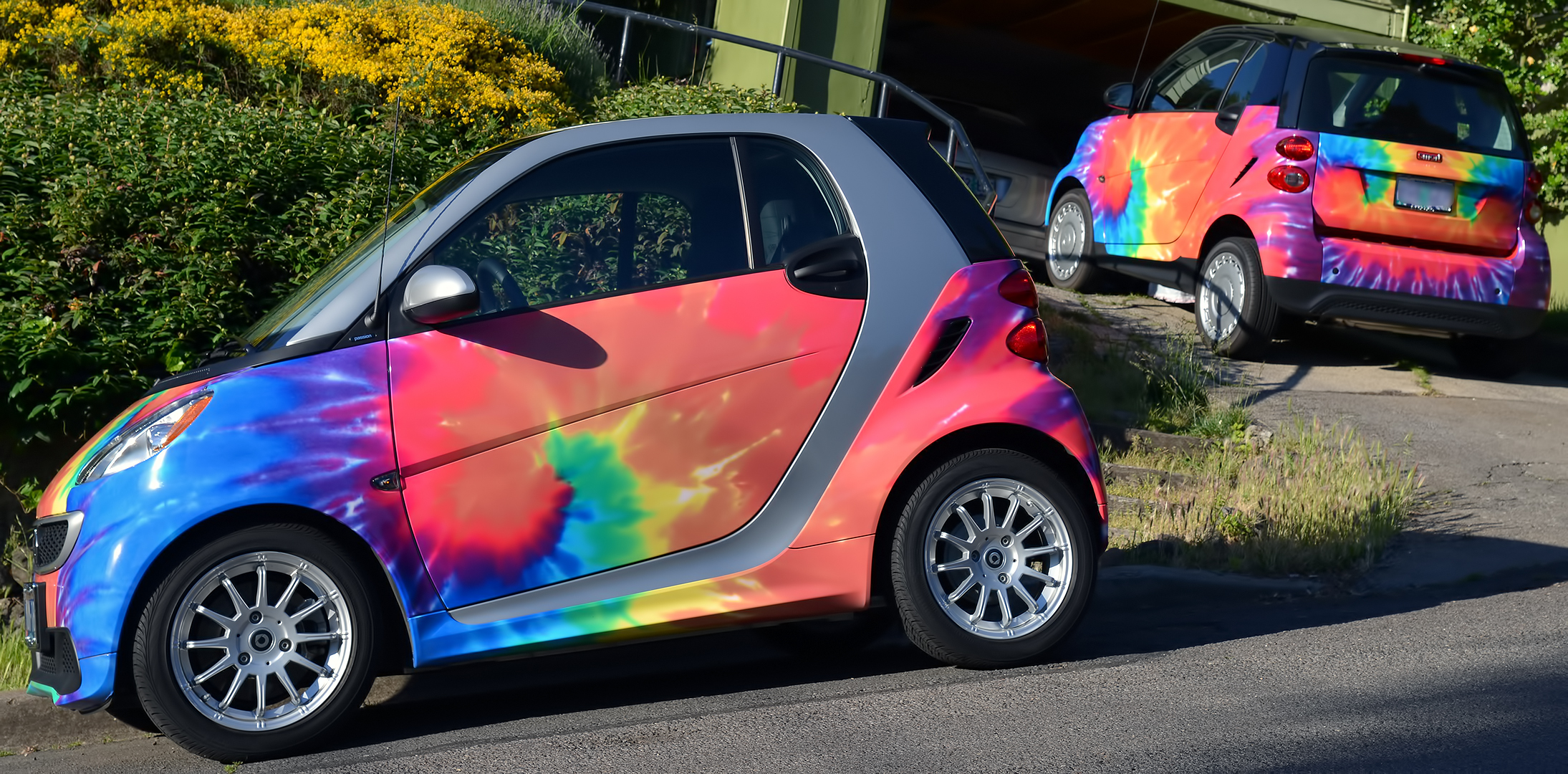 Psychedelic Smart cars  Ashland Daily Photo