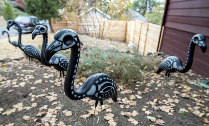 halloween flamingos pink black skeleton