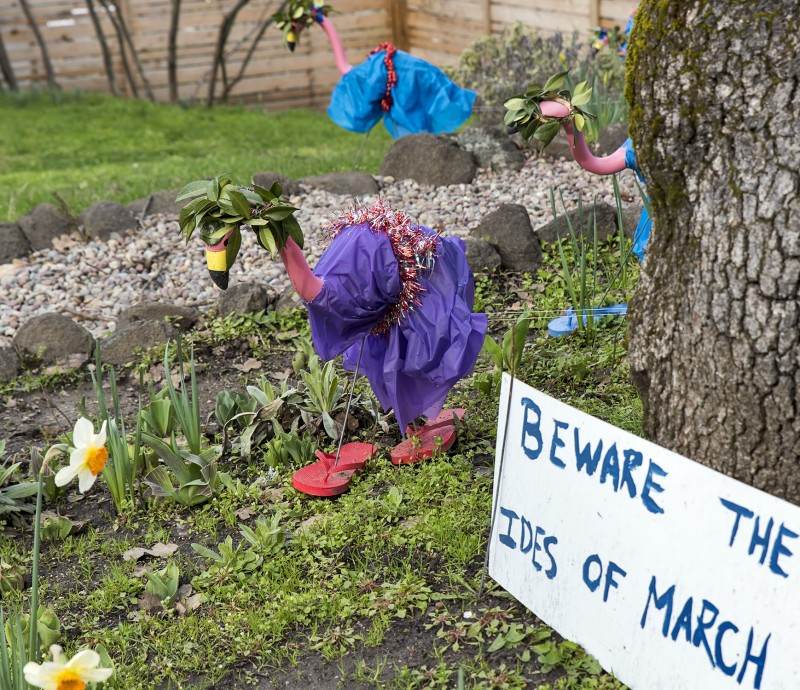 pink flamingos lawn ornaments beware the ides of march julius ceasar