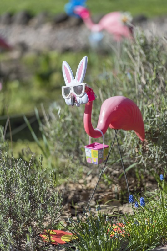 happy easter bunny pink flamingo lawn ornaments