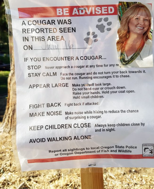 cougar warning ashland oregon