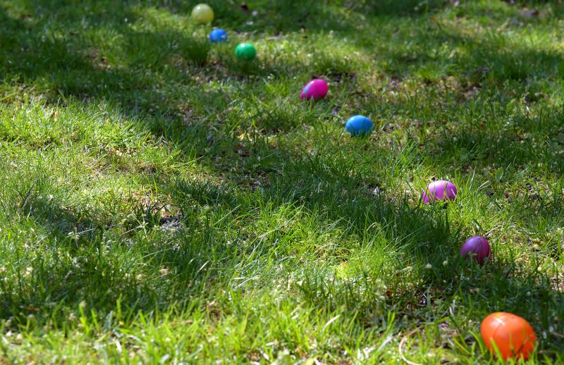 easter eggs grass hunt