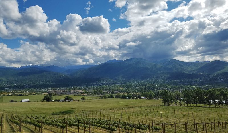 ashland from dana cambell vineyards