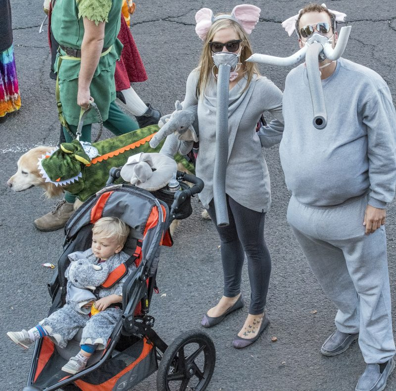 halloween parade dan loch elephant family costume