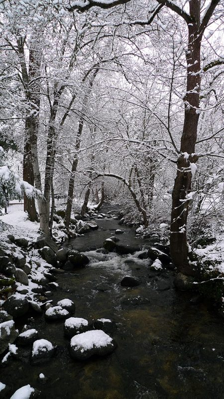 winter ashland oregon snow lithia park