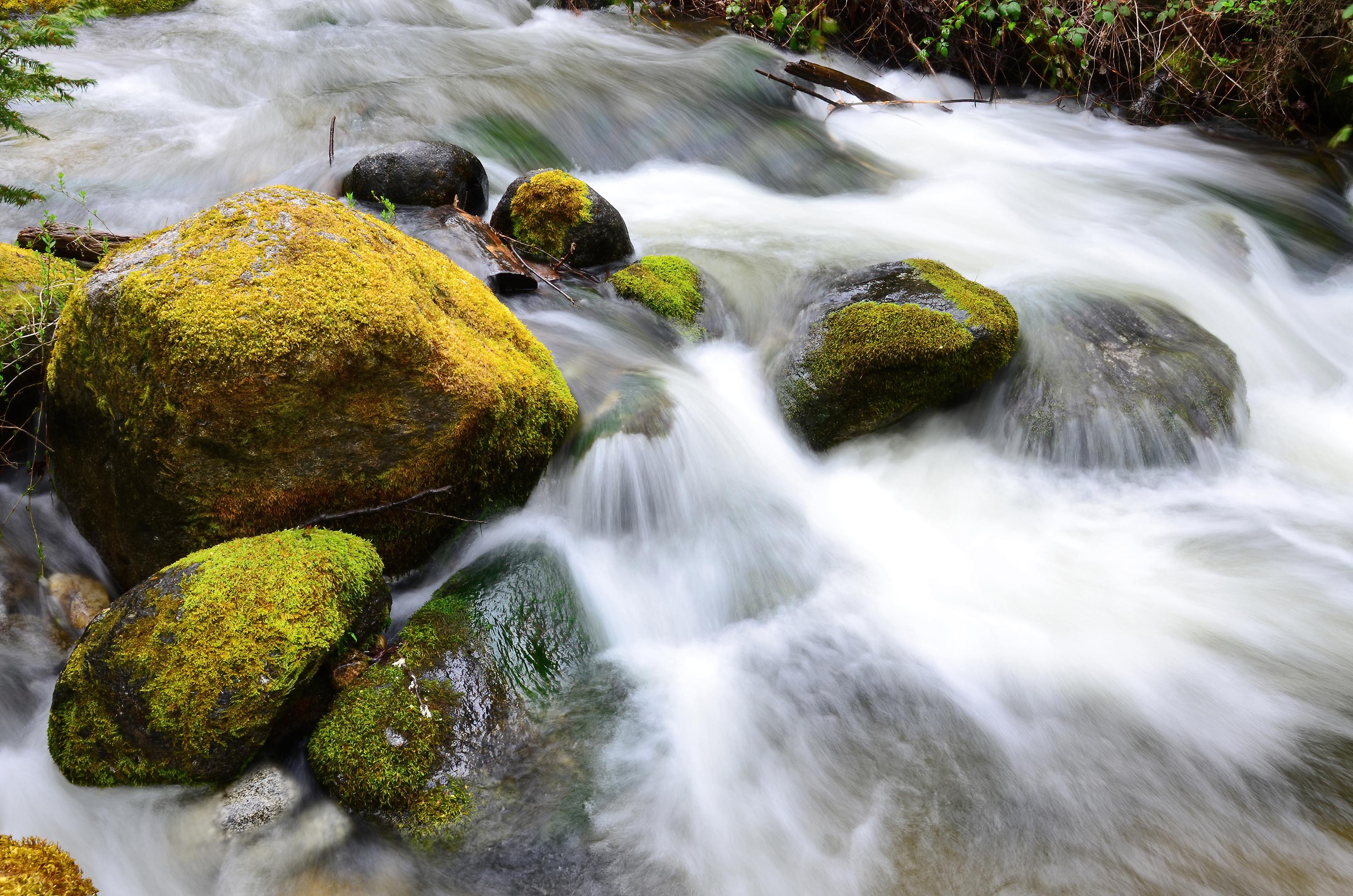 ashland creek lithia park