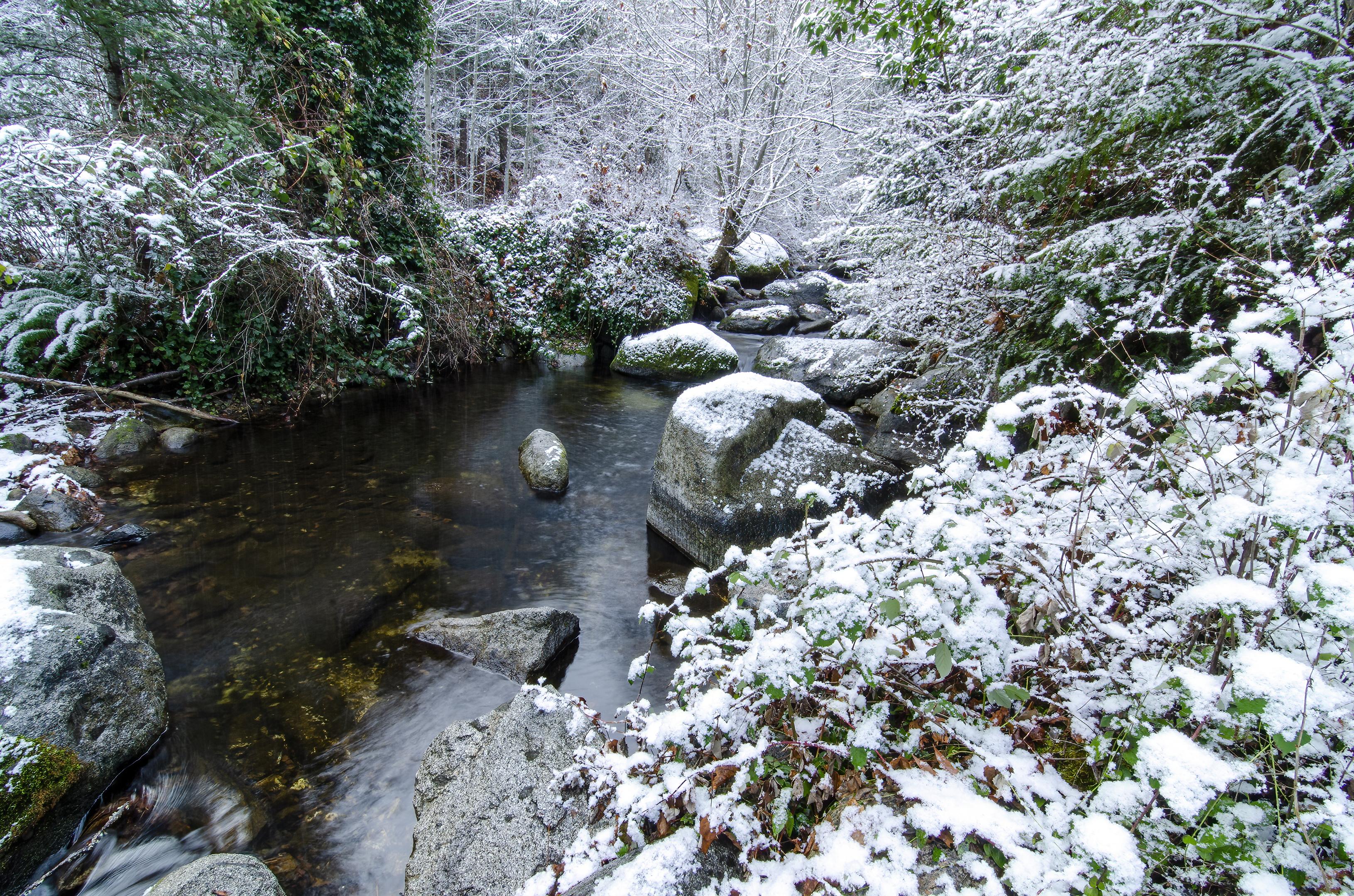 lithia park snow winter ashland creek