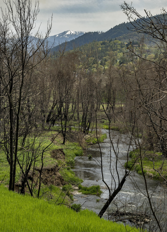 mt ashland bear creek greenway