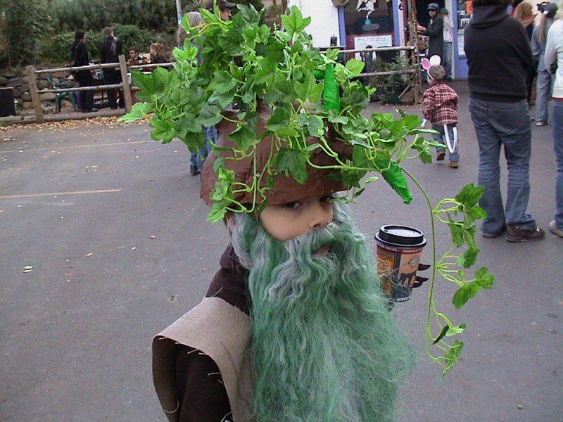 Treebeard halloween costume