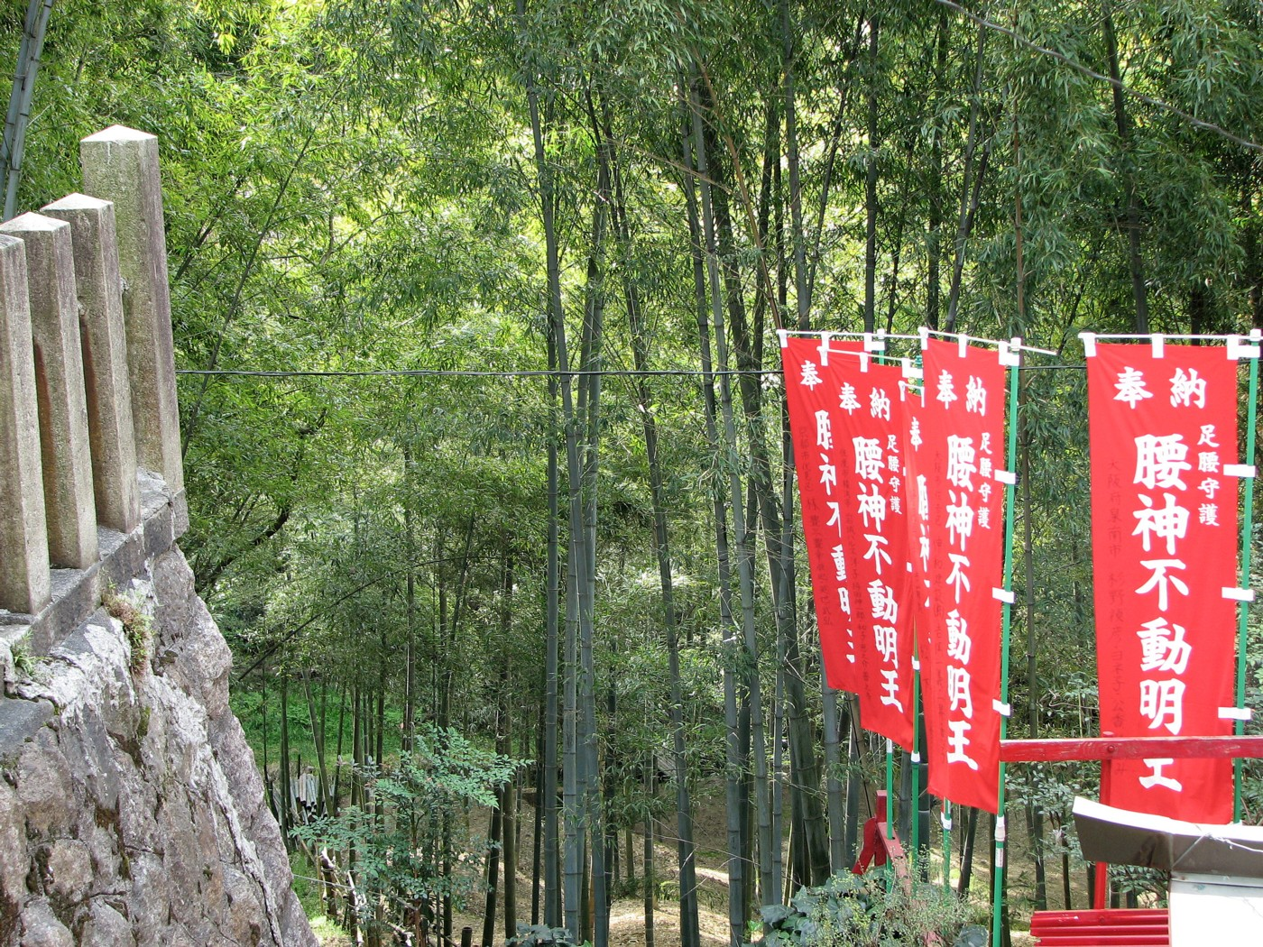 bamboo Fushimi Inari Taisha 伏見稲荷大社
