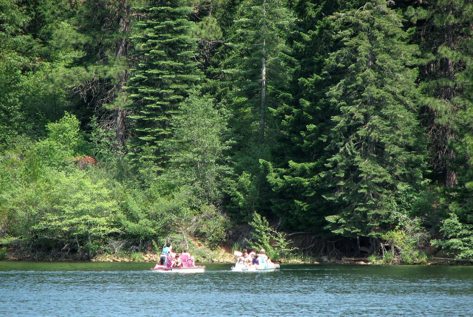 paddle boats on lake siskiyou