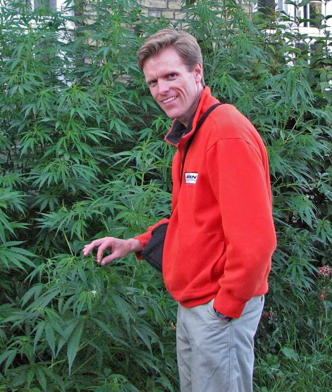 marijuana in christiania copenhagen denmark