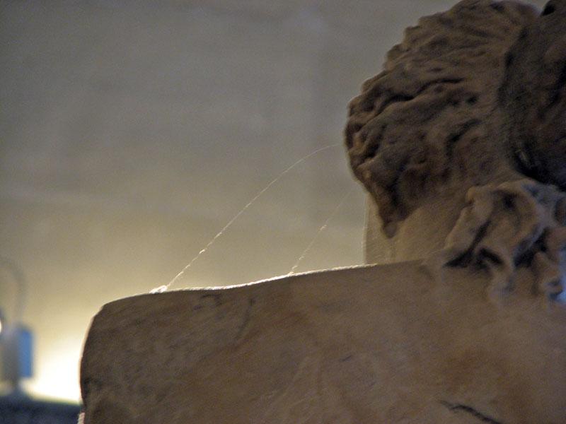 spider web on venus de milo
