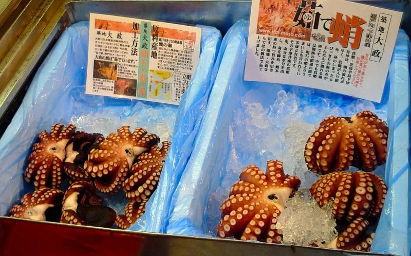 octopus tako tsukiji market tokyo japan