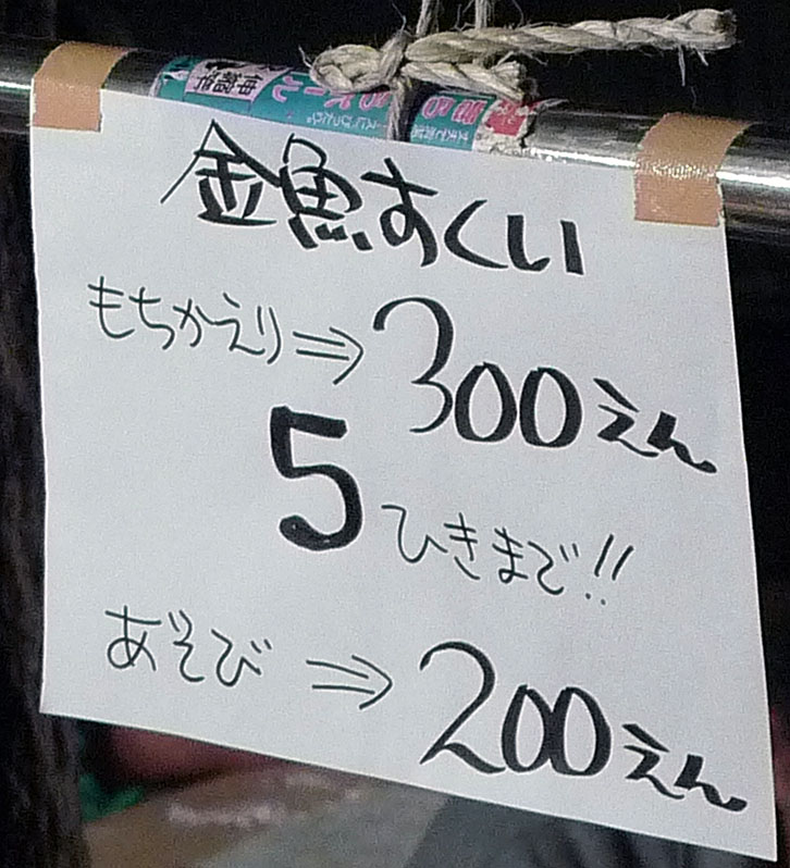 goldfish prices and rules at japanese matsuri