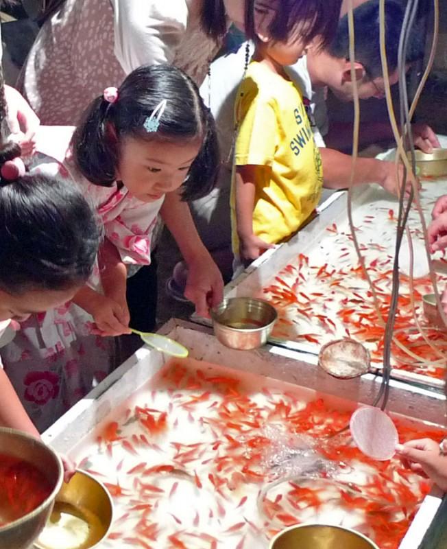 諏訪神社 祭り catching goldfish