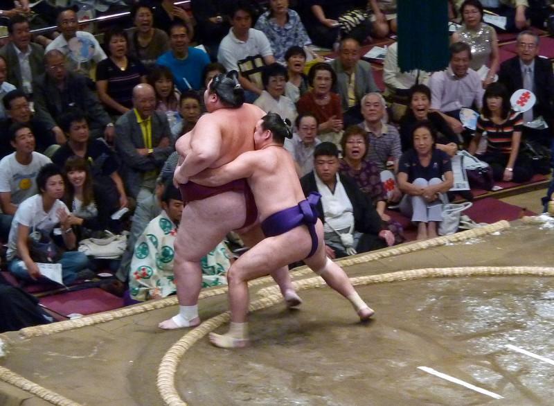 yamamotoyama 山本山 龍太 sumo wrestler largest japan