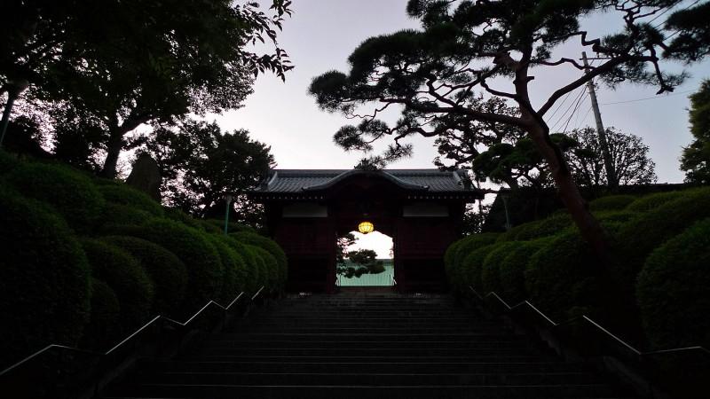 Gokoku-ji 護国寺 stairs gate sunset tokyo japan