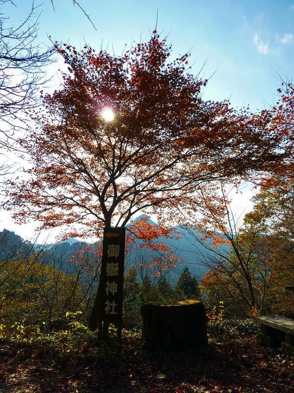 koyo fall foliage autumn mt. mitake jinja japan