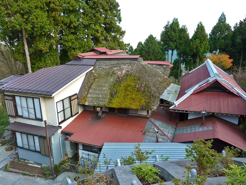 thatch roof moss multiple kind of style mitake jinja japan