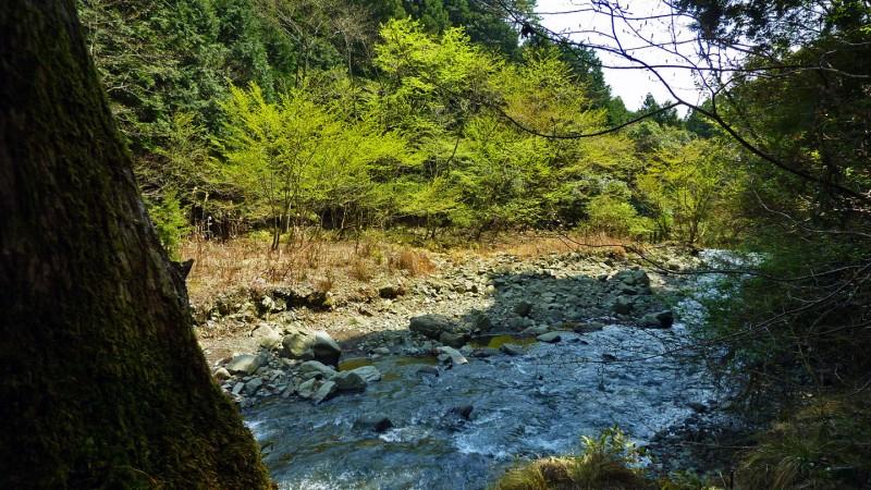 horiyamashita hatano river hike hiking near tokyo