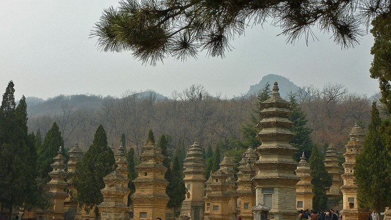 Pagoda Forest at Shaolin Temple henan china