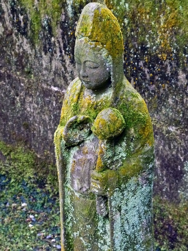 moss covered buddhist statue