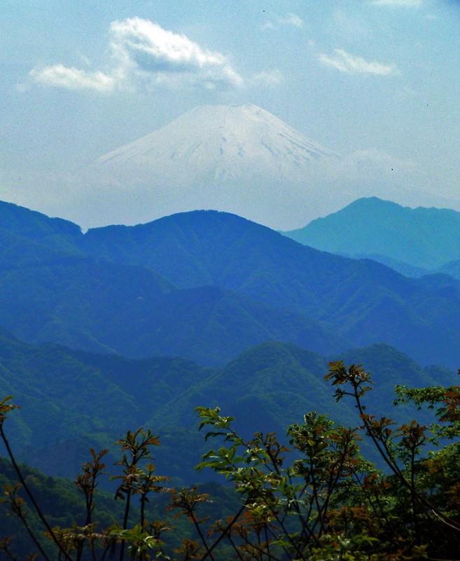 大月市 富士山 倉岳山