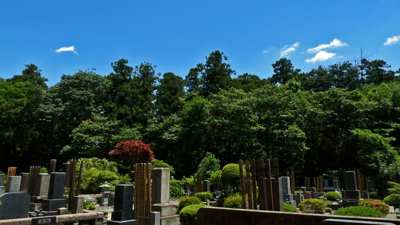 japanese buddhist cemetery under a blue sky