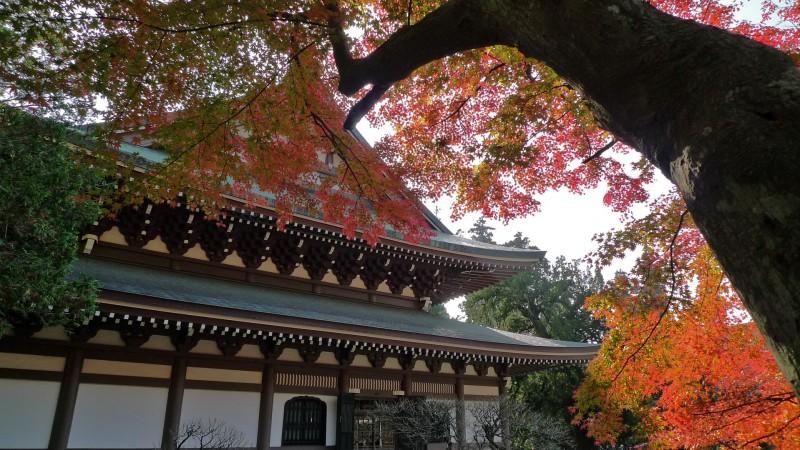 Kamakura's Engakuji 円覚寺