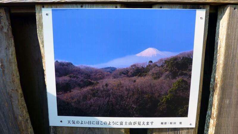 mt fuji view spot kamakura