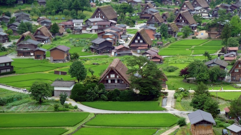 Ogimachi Village 
