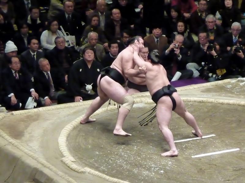 harumafuji kohei kotooshu foreign sumo wrestlers