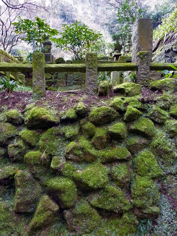 japan moss cemetery tokeiji 東慶寺 Kamakura