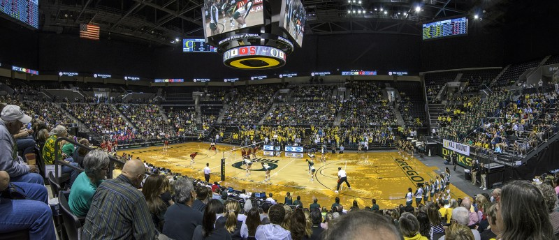 michael knight arena UO campus eugene oregon volleyball stanford ducks