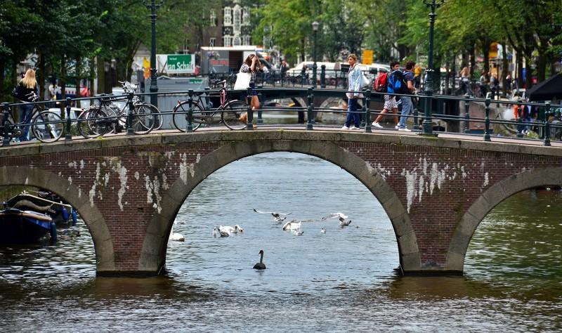 amsterdam holland birds girls bikes bridges