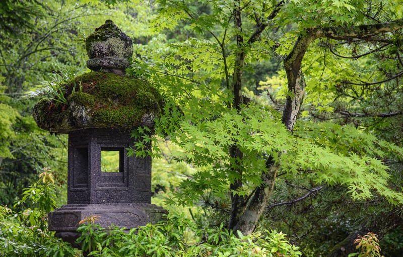 stone lantern moss covered Momijidani Park 紅葉谷公園 miyajima japan