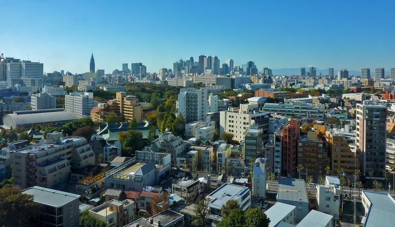 tokyo skyline mt fuji shinjuku