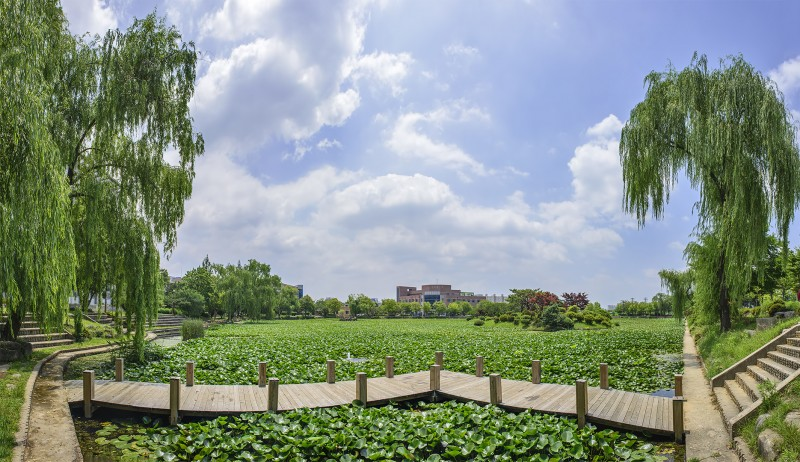 lotus pond chonnam national university gwangju korea photomerge