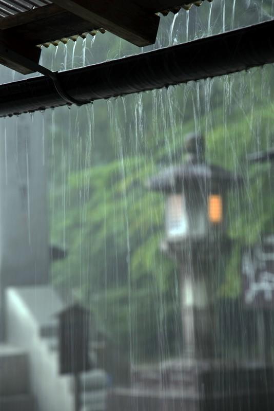 koyasan rain 高野山