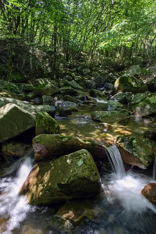 mudeungsan creek gwangju south korea mount mt mudeung