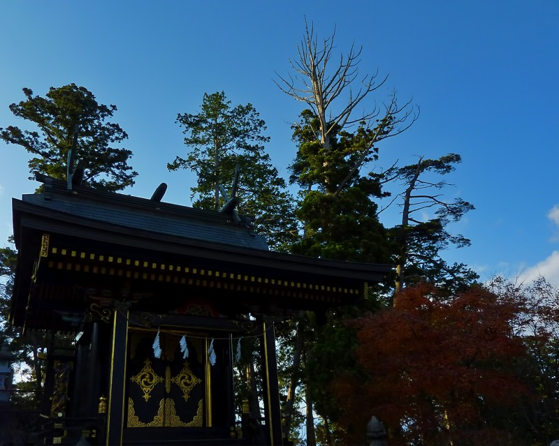 mt mitake fall colors shrine jinja