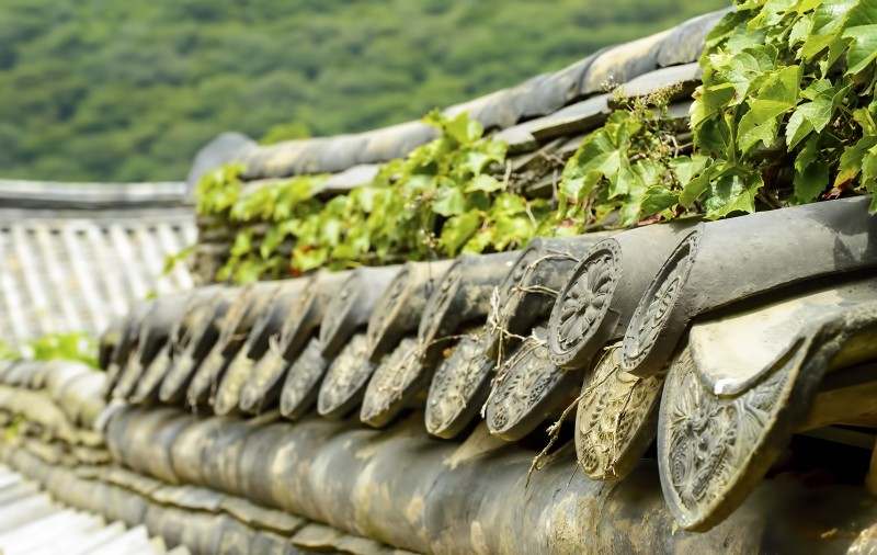 korean temple roof beomeosa busan
